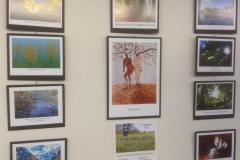 BLG student art show2